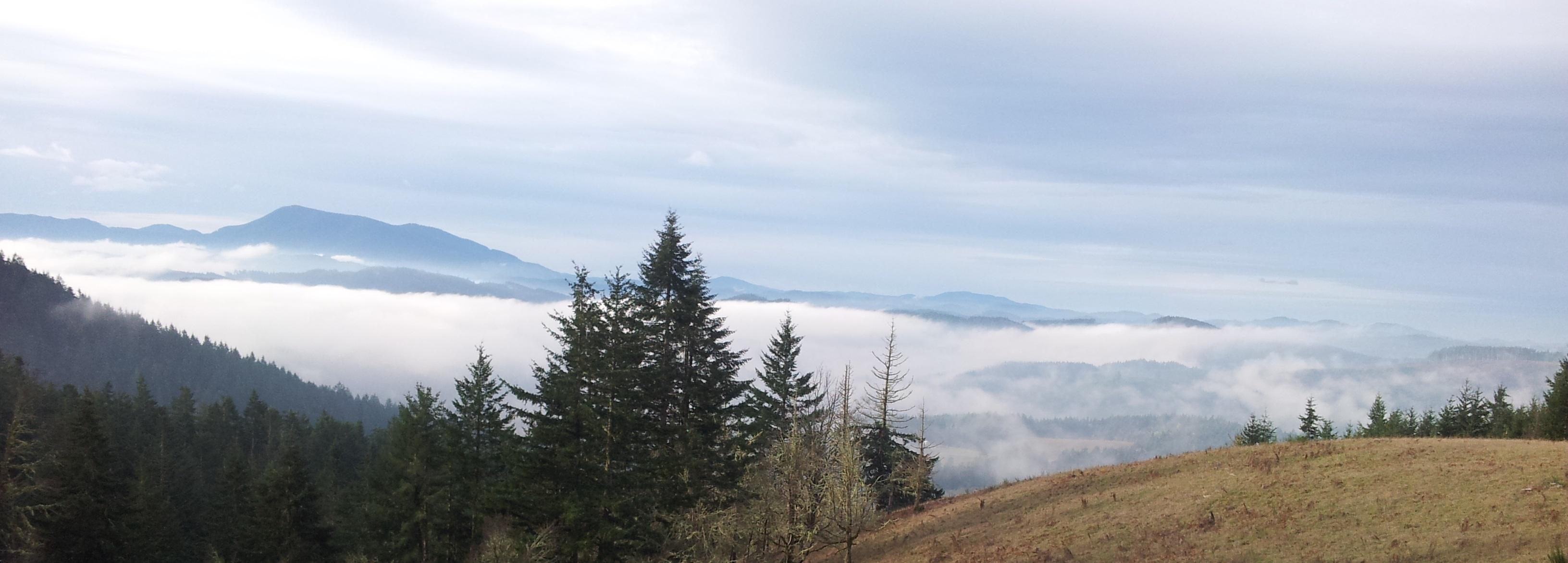 Benton County Property Taxes Oregon