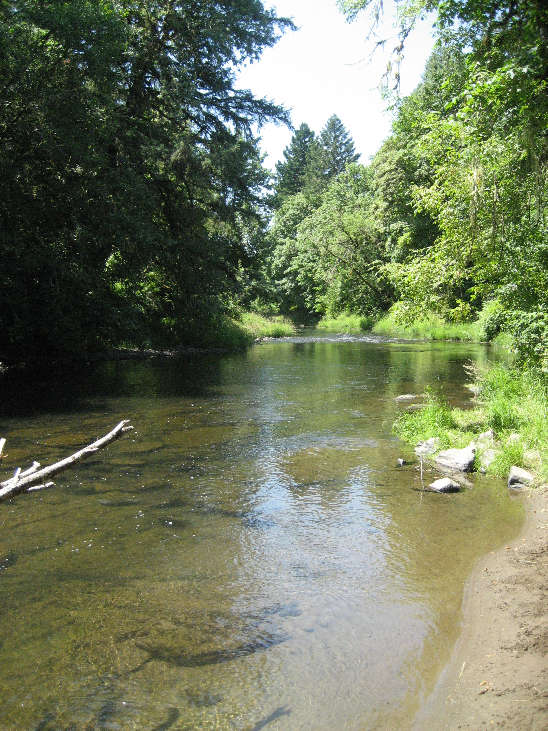 Mill Creek Boat Landing Benton County Oregon