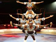 Zuzu African Acrobats