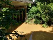 Marys River at Bellfountain Bridge