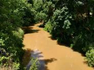 Marys River from Bellfountain Bridge