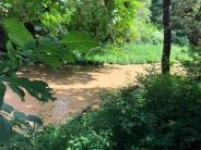 Turbid Water in Marys River