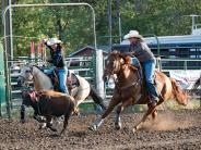 Two calf roper lady contestants (header & heeler) riding down and throwing their ropes towards a steer.