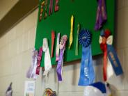 Ribbons for exhibit winners