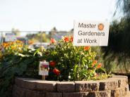 Master gardens outside the fairgrounds arena