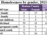 Homelessness by Gender table