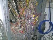 Wire nest.