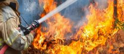 Wildfire season is here protect your home and family