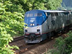 Blue and grey Amtrak passenger trains cruises down the tracks with beautiful green trees in the background.