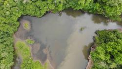 Drone footage of Marys River at west end of Avery Park