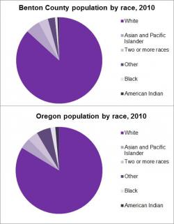 Population By Race graph