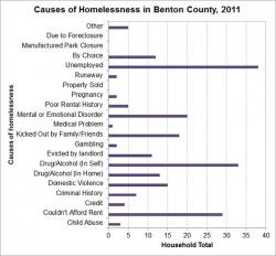 Causes of Homelessness graph
