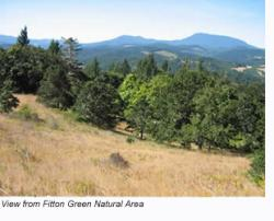 Fitton Green Natural Area