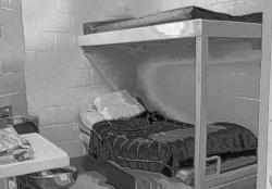 Virtual jail beds - how many do we need?