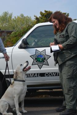 BCSO Animal Control