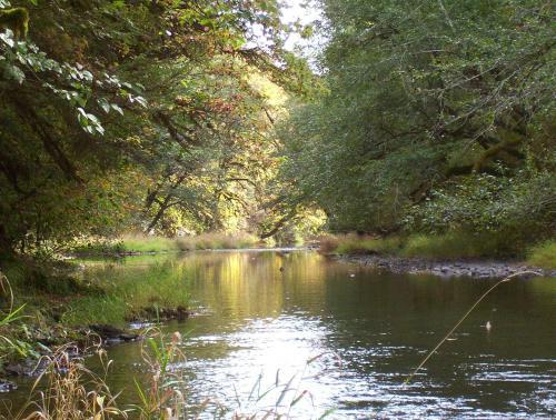 Clemens Park Benton County Oregon